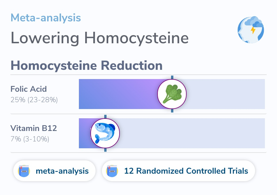 Study on Vitamin B12, Folic Acid, and Homocysteine Reduction