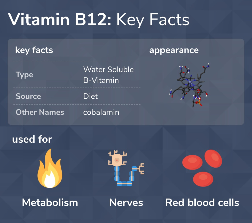 B12 Key Facts