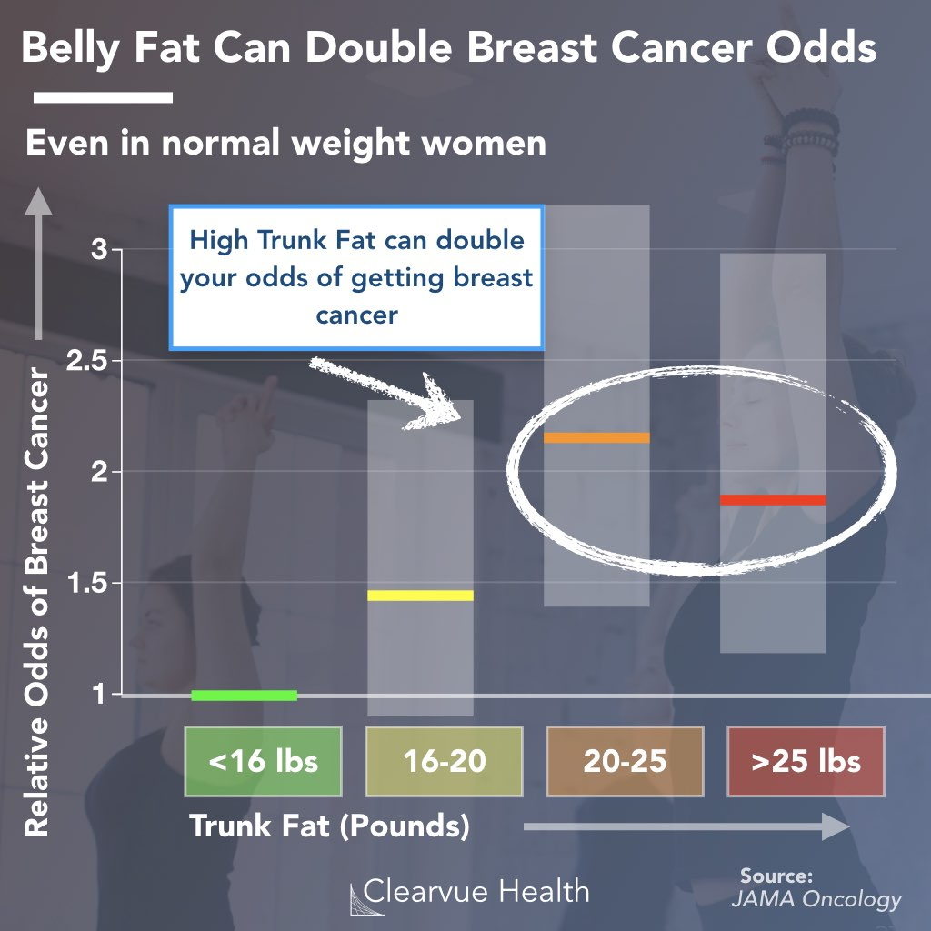 Belly fat and breast cancer