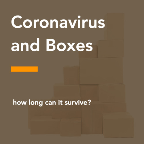 thumbnail for coronavirus-cardboard