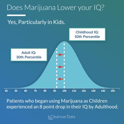 Marijuana and IQ thumbnail