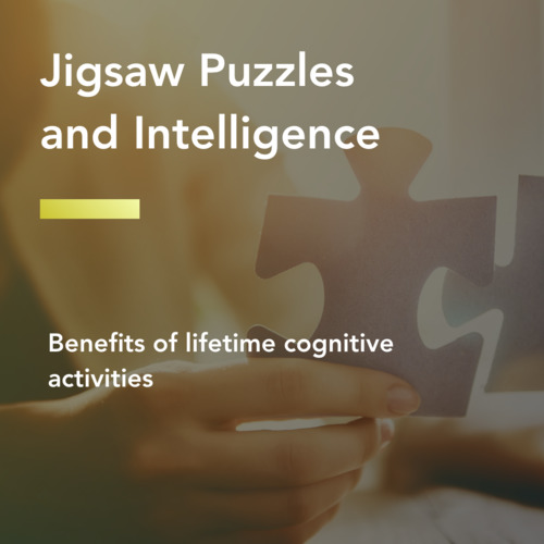 thumbnail for puzzle-intelligence