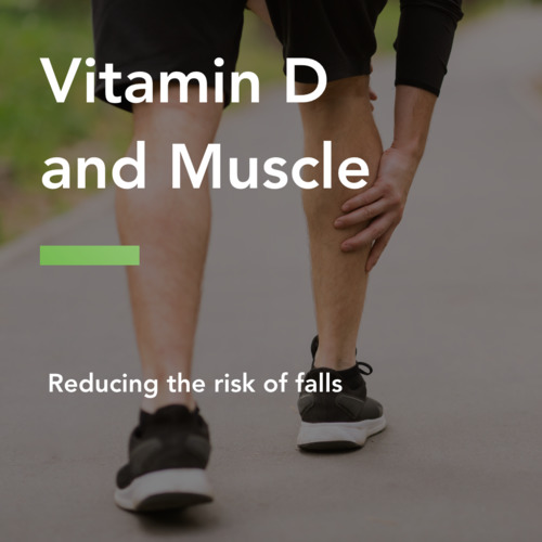 thumbnail for vitamind-muscle