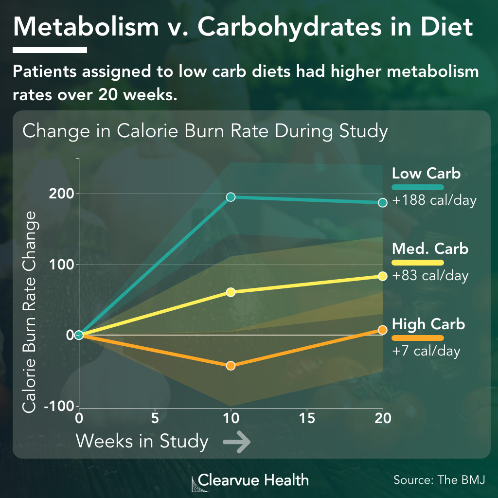 Chart of Metabolism and Calorie Burn on Low and High Carbohydrate Diets
