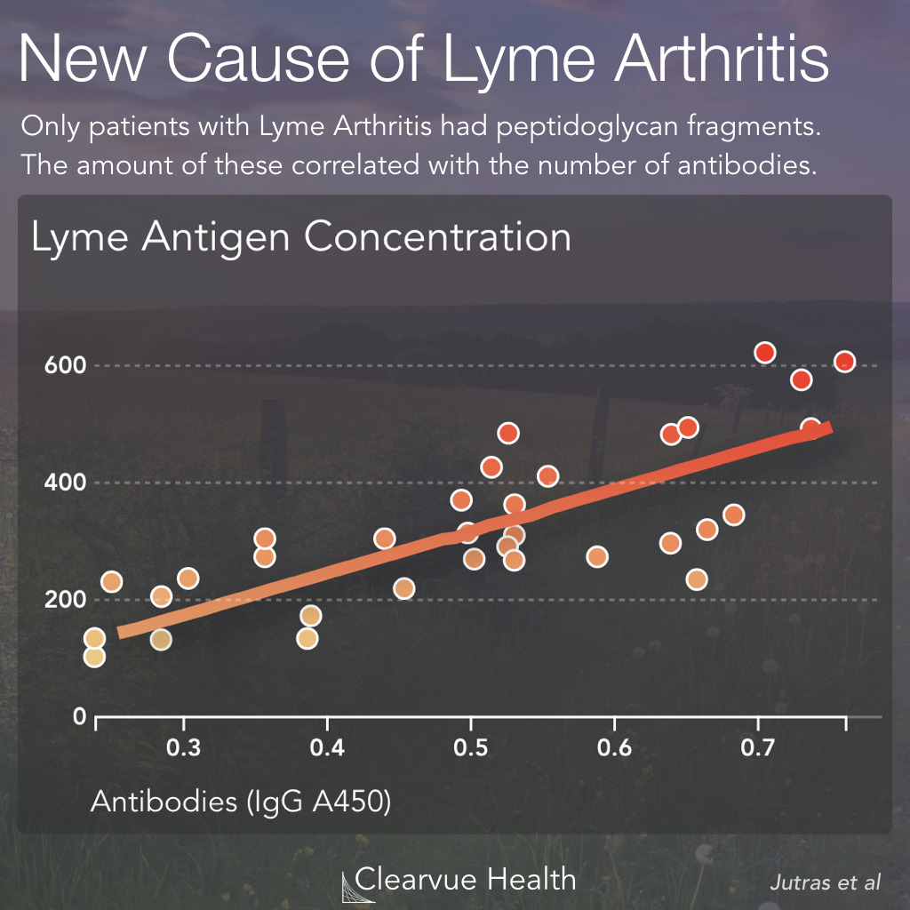Lyme peptidoglycan in Lyme arthritis patients