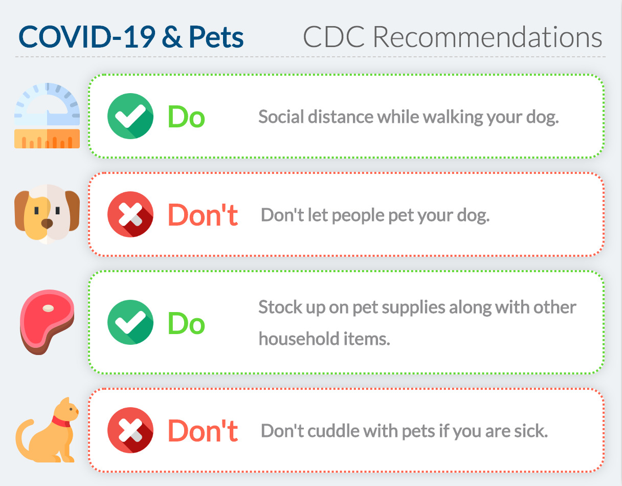 CDC Recommendations on COVID-19 and pets