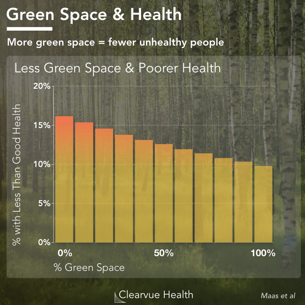 thumbnail for forest-health-benefits