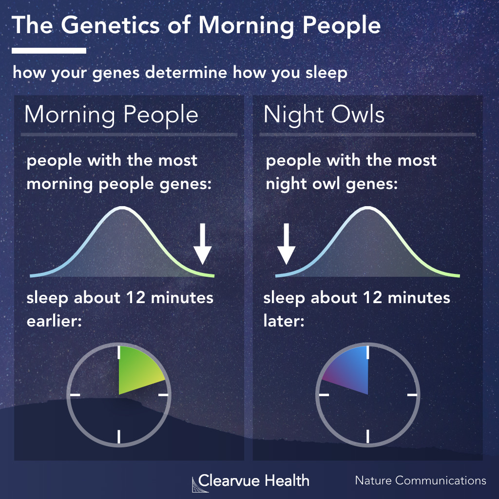 Genetics of morning people
