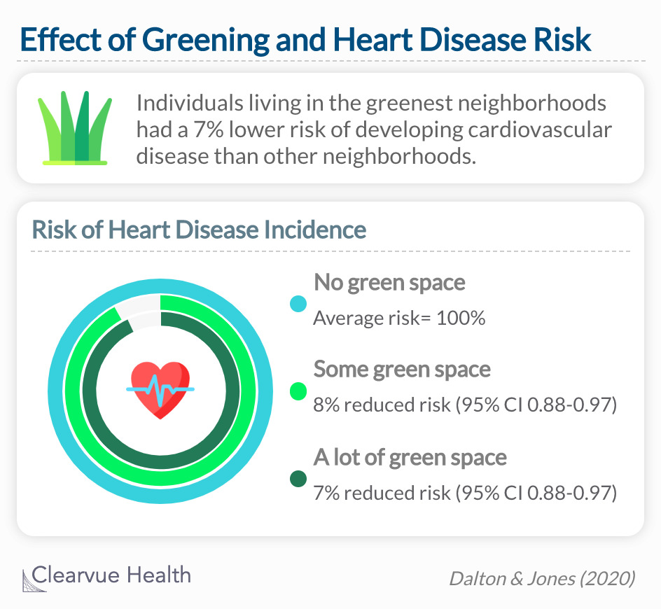 Individuals living near a lot of green space had a 7% lower risk of heart disease than other neighborhoods after adjusting for age, sex, BMI, prevalent diabetes and socioeconomic status.