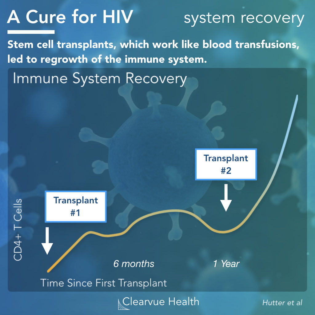 Immune System Recovery with Stem Cell Treatments in HIV