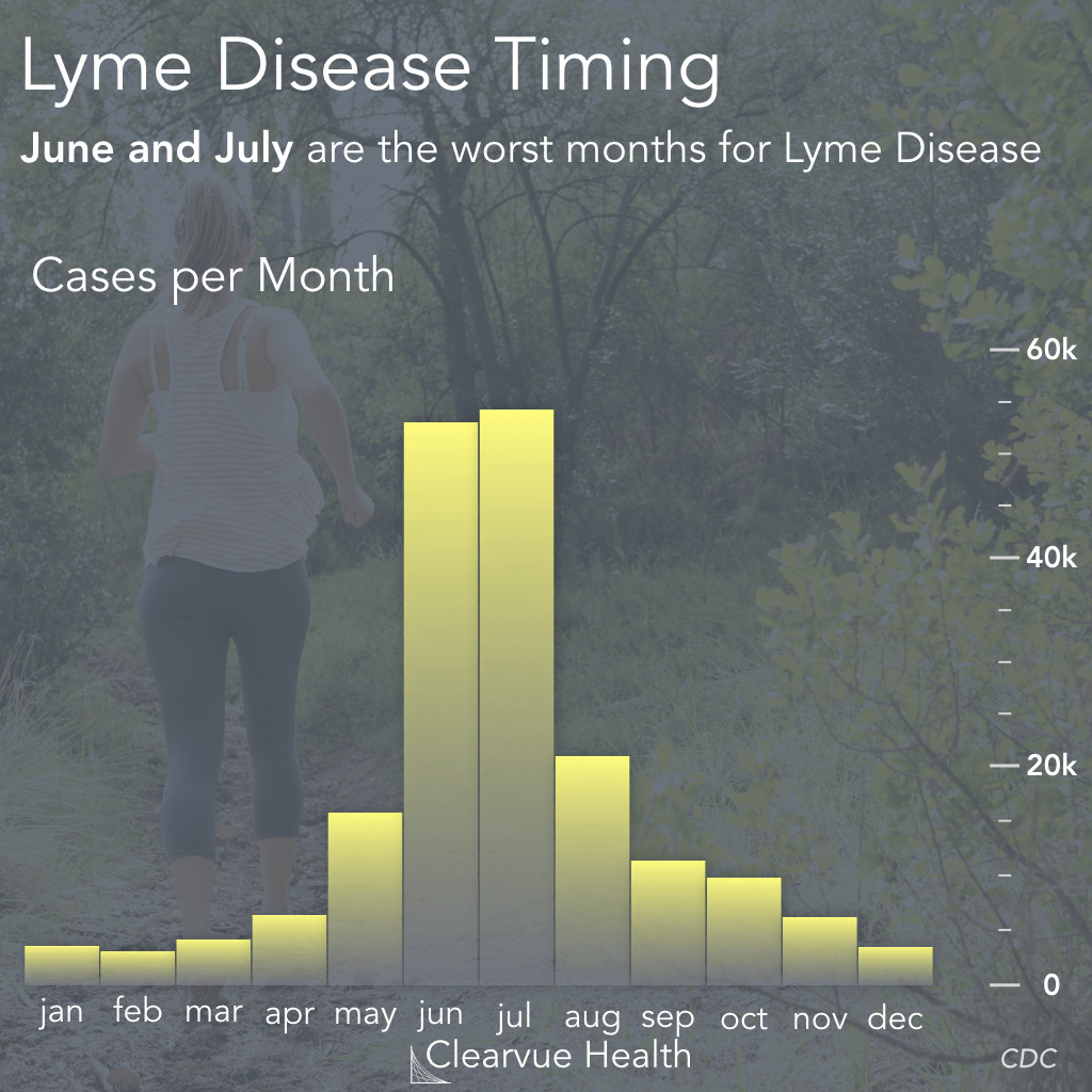 Lyme Disease Risk by Month
