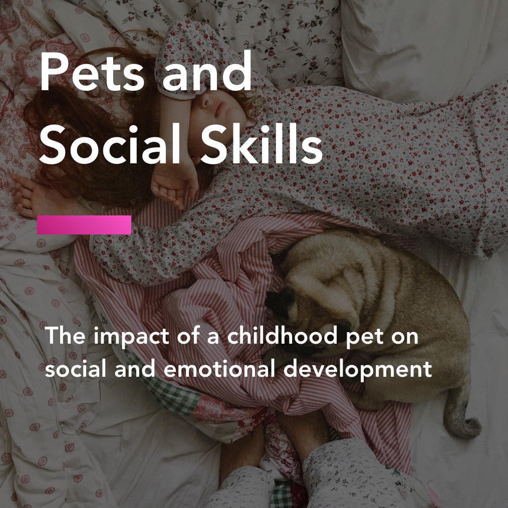 pets and socials skills title
