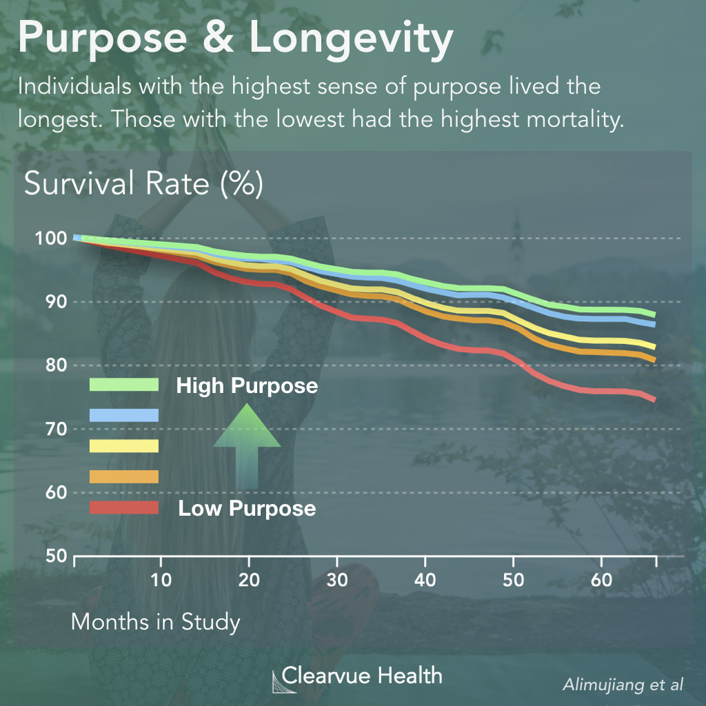 Purpose & Longevity Statistics