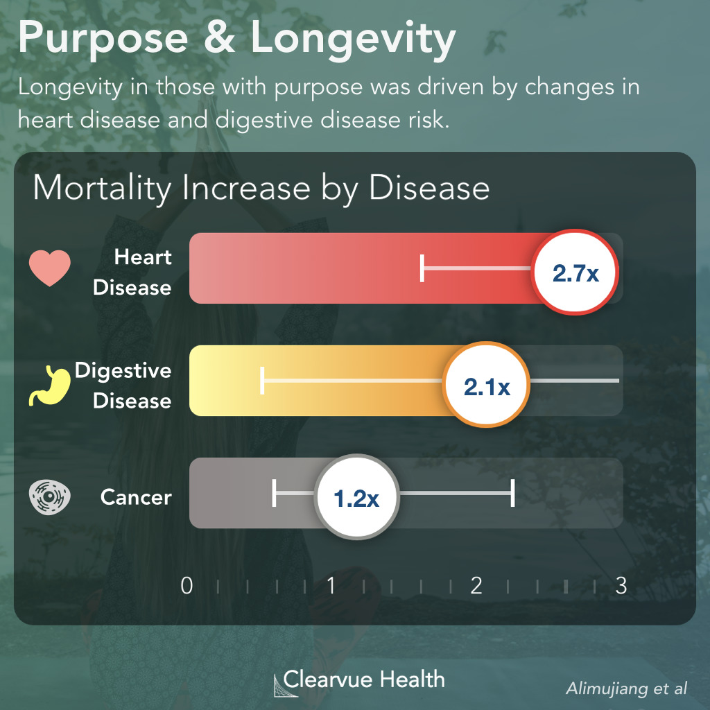 How Purpose Increases Life Expectancy